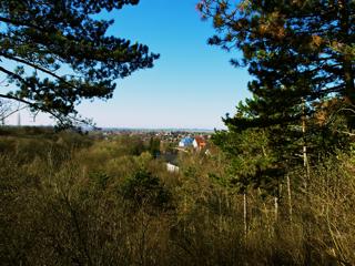 Bild: Blick von der Luisensicht oder Goethesicht auf die Gemeinde Westdorf.