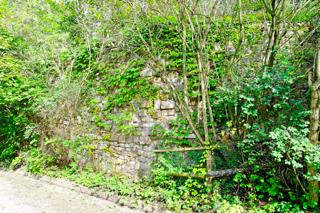 Bilder: Die Reste der Alten Burg zu Aschersleben befinden sich auf dem Gelände des Zoo.