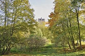 Bild: Schloss Ballenstedt im Herbst vom Schlosspark aus gesehen.