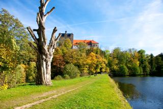 Bild: Das Schloss zu Ballenstedt krönt den Schlosspark mit seinen alten Bäumen.