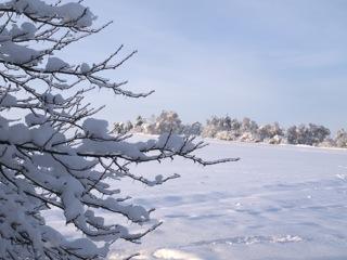 Bild: Blick auf die Rabenskuppe.