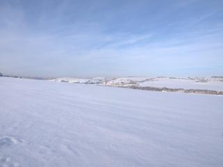 Bild: Blick von der Rabenskuppe bei Mansfeld auf den Unterharz.