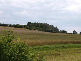 Bild: Blick auf die Rabenskuppe bei Mansfeld.