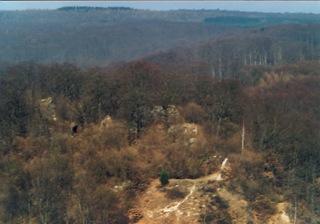 Bild: Die Ruinen der Questenburg bei Questenberg im Harz.