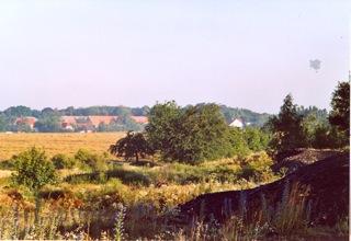 Bild: Bergbauhalden auf der Mansfelder Hochfläche bei Welfesholz.