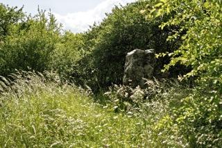 Bild: Die Speckseite oder Speckstein von Aschersleben ist ein jungsteinzeitlicher Menhir.