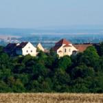 Bild: Die Konradsburg bei Ermsleben.
