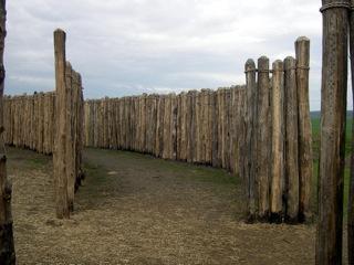 Bild: Die jungsteinzeitliche Kreisgrabenanlage von Goseck.