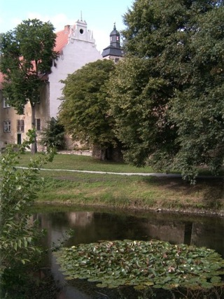 Bild: Die Wasserburg Egeln.