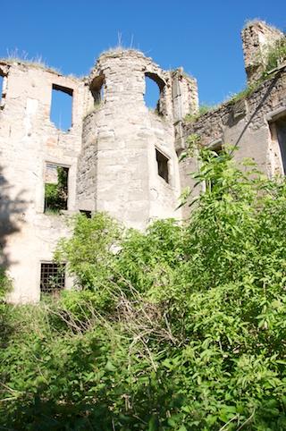 Bild: Impressionen von der Ruine Haus Zeitz.