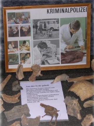 Bild: Knochenreste und verrostete Waffen als Zeugen eines möglichen Verbrechens.