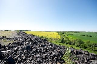 Bild: Farbkontrast - Schlackenhalde, Rapsfelder und Getreidefelder zwischen Eisleben und Wimmelburg.