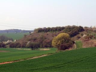 Bild: Die Schalkenburg bei Quenstedt.