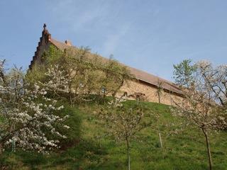 Bild: An der Burg zu Freckleben.