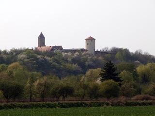 Bild: Die Burg zu Freckleben.