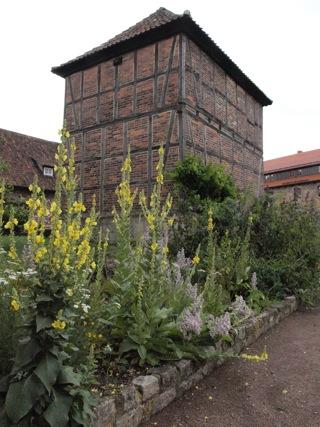 Bild: Die Wohn- und Wirtschaftsgebäude des ehemaligen Klosters Konradsburg.