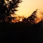 Sonnenuntergang in Greifenhagen.