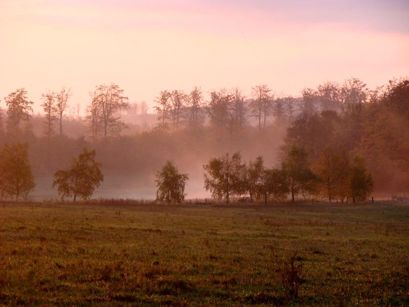 Friedrichsbrunn - Morgenstimmung über den herbstlichen Wäldern des Harzes.