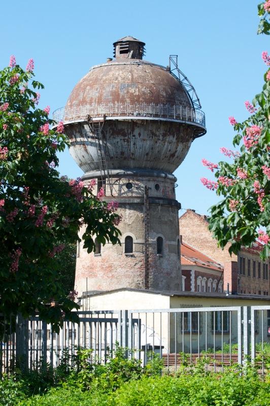 Aschersleben - Blühende Kastanien und rostiger Wasserturm