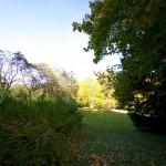 Herbstlich gefärbte Bäume im Schlosspark zu Ballenstedt im Harz.