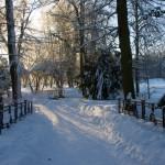 Im Schlosspark zu Ballenstedt im Winter