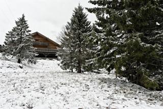 Bild: Am Torfhaus bei Braunlage. Aufnahme vom April 2012.