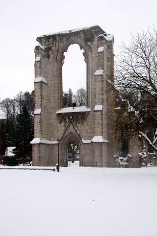 Bild: Winterliche Impressionen von der Ruine des ehemaligen Klosters Walkenried.