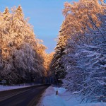 Bild: Ein Wintermorgen am Josephskreuz auf dem Großen Auerberg bei Stolberg im Harz.