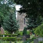 Bild: Auf dem Wiperti-Friedhof - Blick auf die Kirche St. Wipertii zu Quedlinburg.