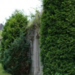 Bild: Gruftanlage auf dem Wiperti-Friedhof zu Quedlinburg.
