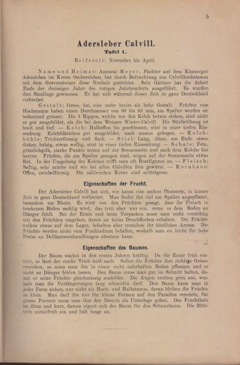 Bild: Beschreibung des Adersleber Calvill im Buch Unsere besten Deutschen Obstsorten Band I: Äpfel von 1923.
