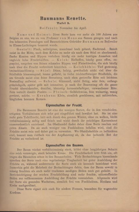 Bild: Beschreibung der Baumanns Renette im Buch Unsere besten Deutschen Obstsorten Band I: Äpfel von 1923.