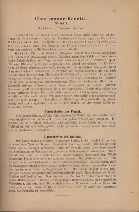 Bild: Beschreibung der Champagner-Renette im Buch Unsere besten Deutschen Obstsorten Band I: Äpfel von 1923.