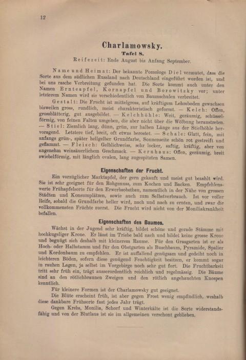 Bild: Beschreibung des Charlamowsky im Buch Unsere besten Deutschen Obstsorten Band I: Äpfel von 1923.