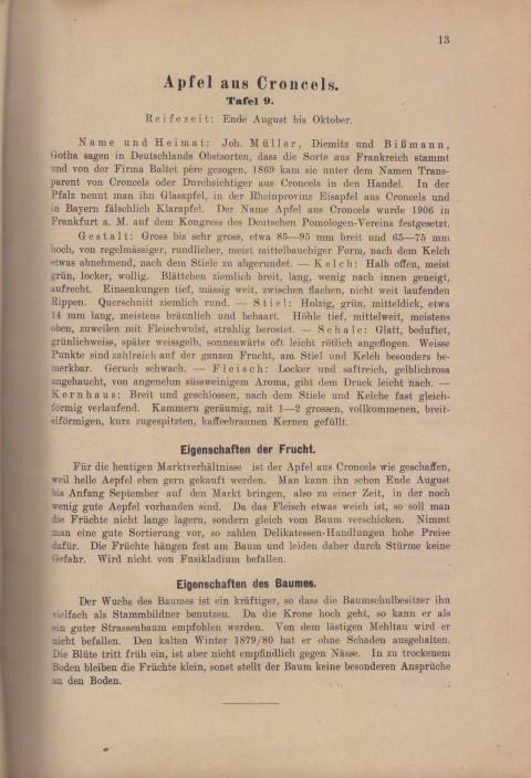 Bild: Beschreibung des Croncels im Buch Unsere besten Deutschen Obstsorten Band I: Äpfel von 1923.