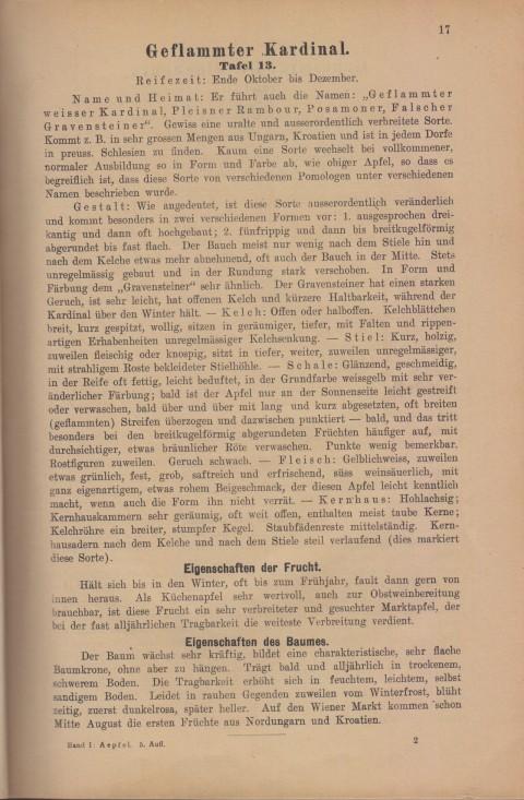 Bild: Beschreibung des Geflammter Kardinal im Buch Unsere besten Deutschen Obstsorten Band I: Äpfel von 1923.