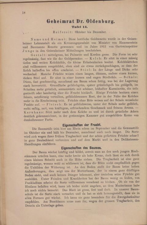Bild: Beschreibung des Geheimrat Dr. Oldenburg im Buch Unsere besten Deutschen Obstsorten Band I: Äpfel von 1923.