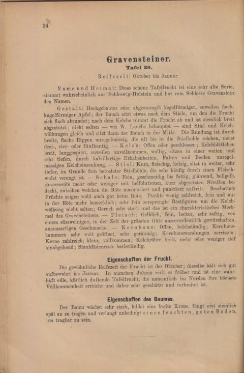 Bild: Beschreibung der Gravensteiner im Buch Unsere besten Deutschen Obstsorten Band I: Äpfel von 1923.