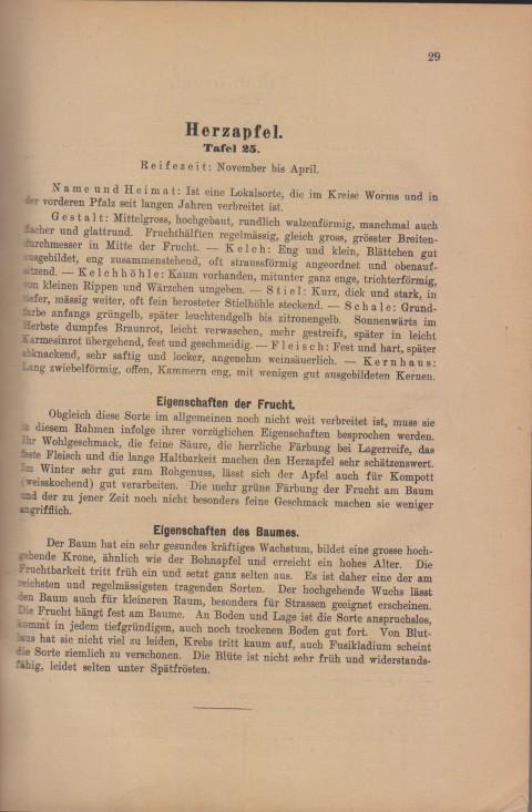 Bild: Beschreibung des Herzapfel im Buch Unsere besten Deutschen Obstsorten Band I: Äpfel von 1923.