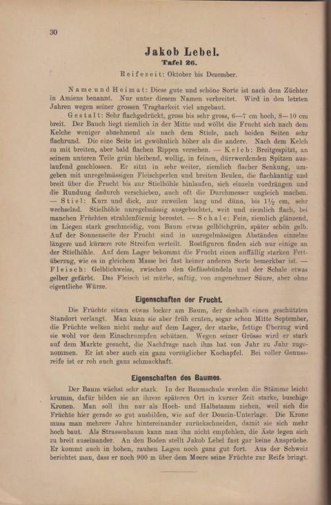 Bild: Beschreibung des Jakob Lebel im Buch Unsere besten Deutschen Obstsorten Band I: Äpfel von 1923.