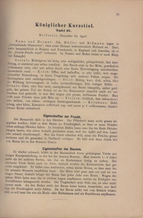 Bild: Beschreibung des Königlicher Kurzstiel im Buch Unsere besten Deutschen Obstsorten Band I: Äpfel von 1923.