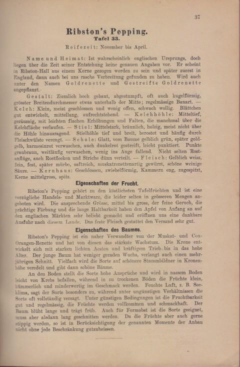 Bild: Beschreibung des Ribston's Pepping im Buch Unsere besten Deutschen Obstsorten Band I: Äpfel von 1923.