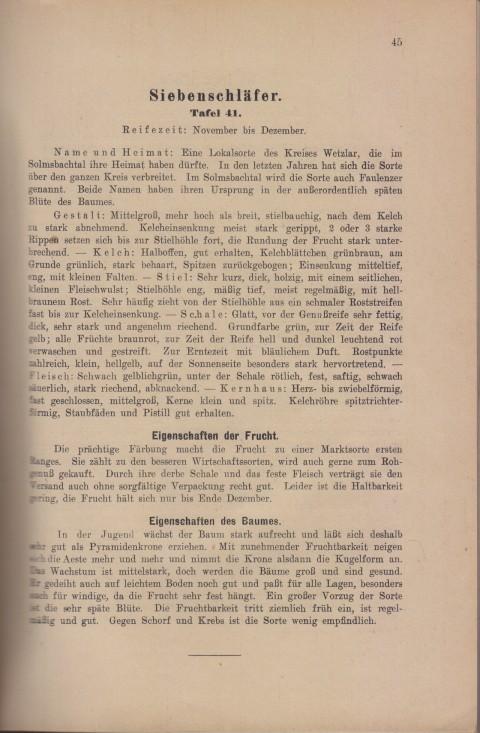 Bild: Beschreibung des Siebenschläfer im Buch Unsere besten Deutschen Obstsorten Band I: Äpfel von 1923.