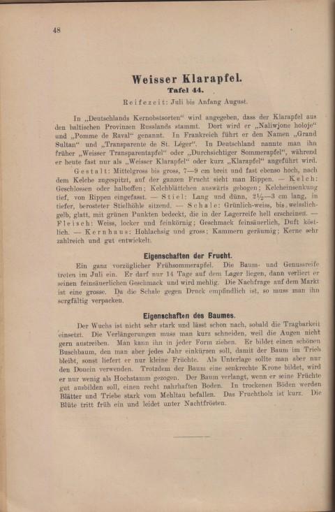 Bild: Beschreibung des Weisser Klarapfel im Buch Unsere besten Deutschen Obstsorten Band I: Äpfel von 1923.