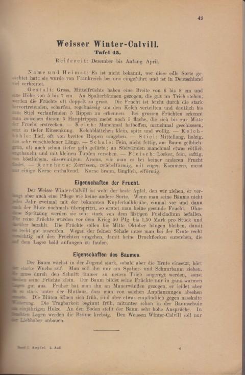 Bild: Beschreibung des Weisser Winter-Calvill im Buch Unsere besten Deutschen Obstsorten Band I: Äpfel von 1923.